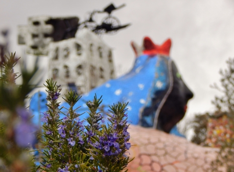 February: Amazed every time I visit it. Giardino dei tarocchi by Niki de Saint Phalle, southern Tuscany.